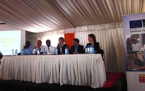 Panelists:Ernest Muwamba, Zambia Business in Development Facility; Arjan Schuthof, the Dutch Ministry of Foreign Affairs; Sitali Muyatwa, Water and Sanitation for All; Petra Künkel, CLI; Eddine Sarroukh, Philips Africa; Dr. Anne Ellersiek, SFB700/SWP